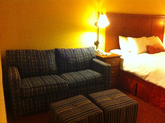 Hampton Inn Louisville Airport: sofabed