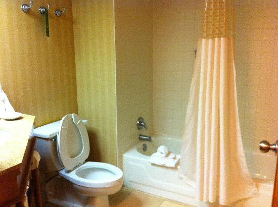 Hampton Inn Louisville Airport: bathroom