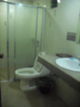 Boracay Peninsula Resort: basic bathroom with hot n cold shower
