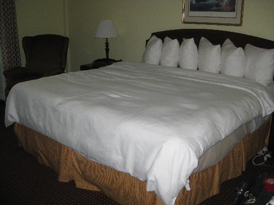 BEST WESTERN Old Colony Inn: Comfy Bed :)
