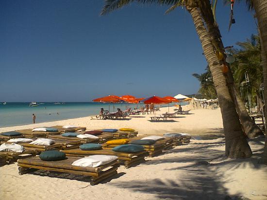 La Oviedo Villa Resort: Front Beach