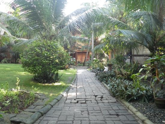 Alona Tropical Beach Resort: リゾートの敷地内の様子です。