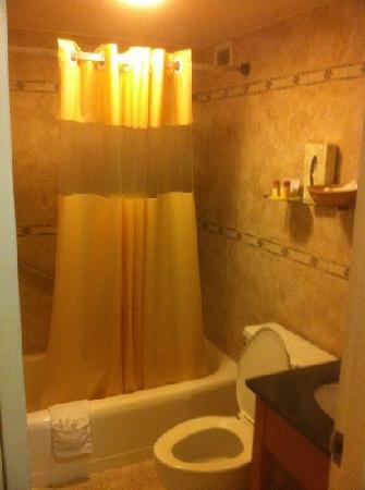 Days Inn Washington DC / Connecticut Avenue: bathroom