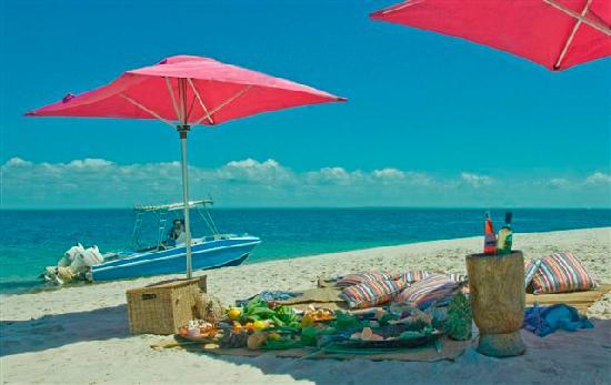 Dugong Beach Lodge: Beach Picnic