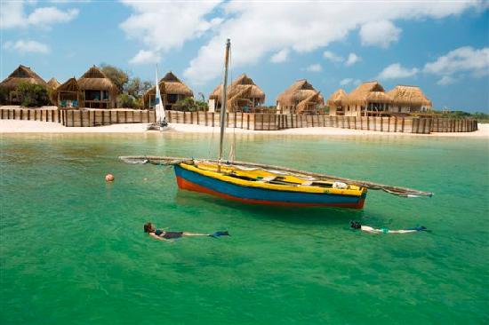 Dugong Beach Lodge: Snorkelling