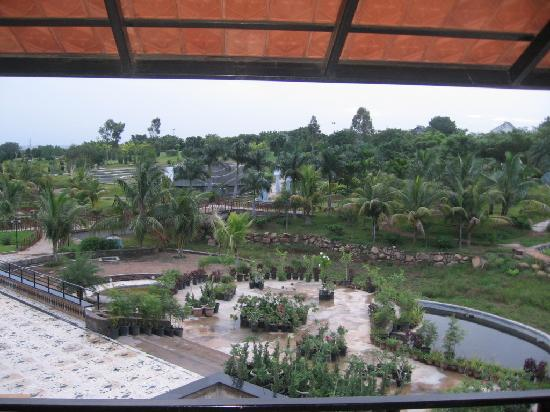 Pragati Resorts: thebeutiful view from our room