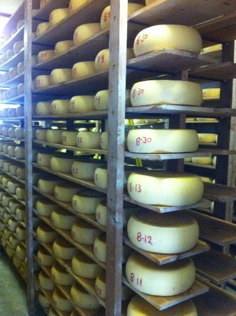 Matos Cheese Factory: The Cheese!