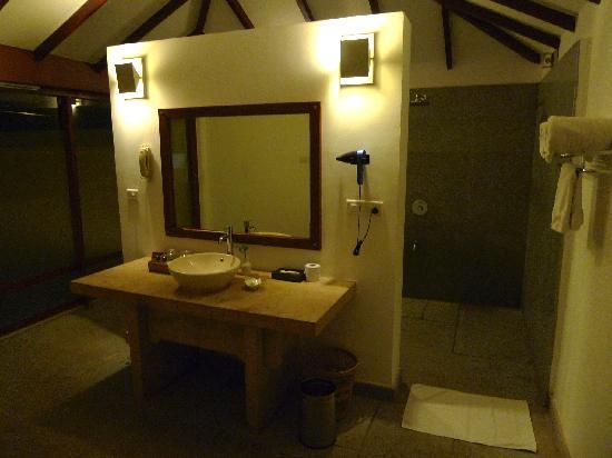 Une salle de bains spacieuse douche et wc derri re le for Salle de bain wc 3m2