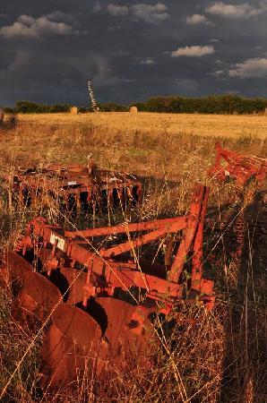 Agriturismo Il Forasacco: Paesaggio 4