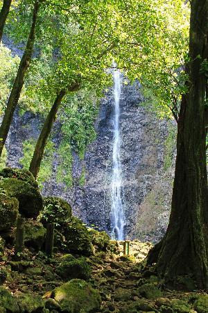 Tahiti, French Polynesia: Faarumai Falls