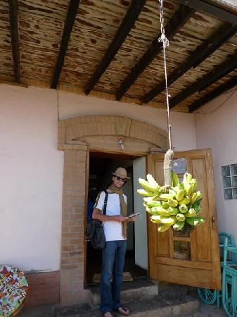 Villa Iarivo: Front door