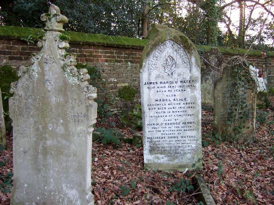 The Old Cemetery: Southampton Old Cemetery