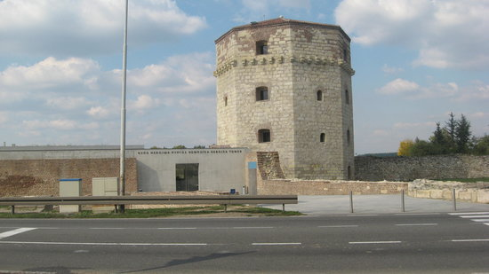 Nebojsa Tower