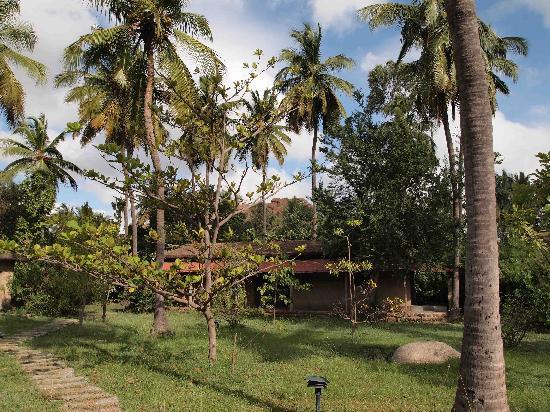 Shama's Cottages : outside the cottage