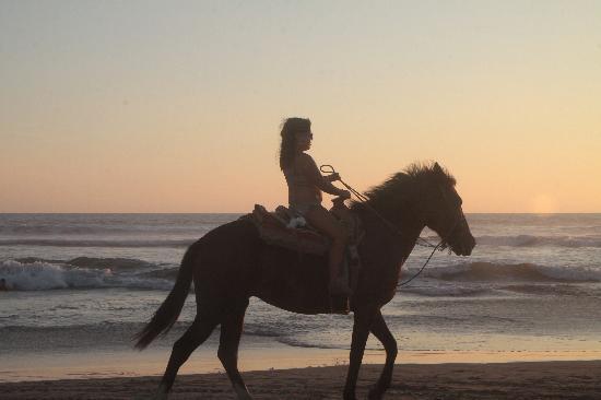 Playa Revolcadero : Paseos a caballo y renta de motos