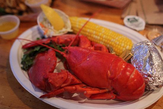 1.5lb Lobster meal - Picture of Portland Lobster Co, Portland - TripAdvisor