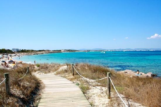 Playa de Ses Illetes: Illetes 2
