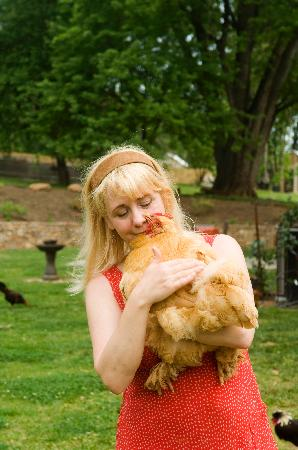 Stone Manor Vineyard & Orchard B&B: Cuddle a chicken with your Hostess Beth