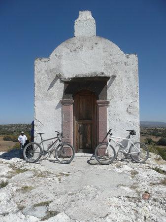 Bici-Burro