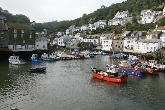 Polraen Country House Hotel: The harbour at Polperro