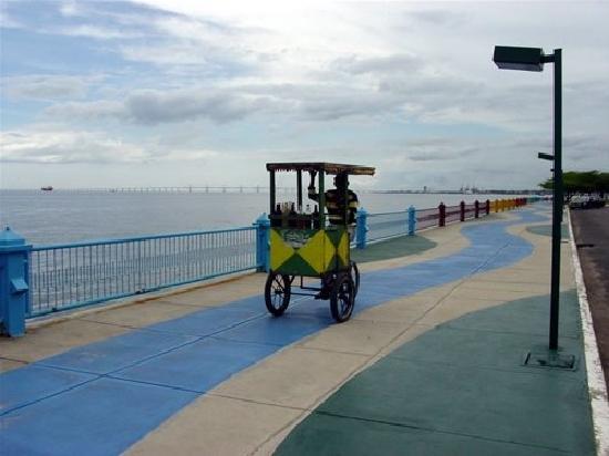 La vereda del lago Maracaibo: cepilladero