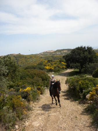 Riding Fun In The Sun: Anstiege bieten eine gute Gelegenheit für einen schnellen Gallopp.
