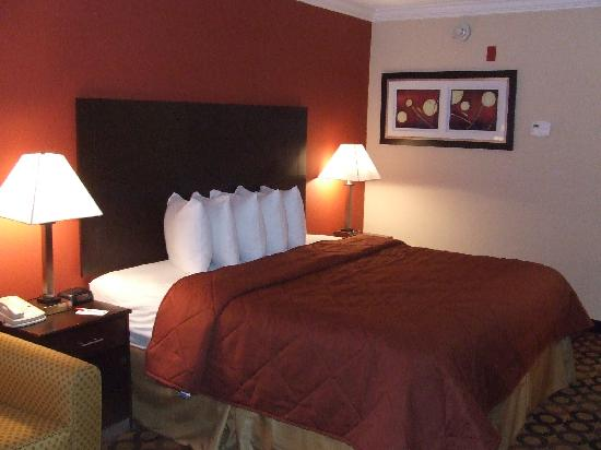 Econo Lodge Richmond Hill: King Room