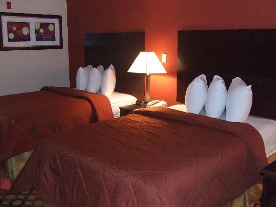 Econo Lodge Richmond Hill: Double room