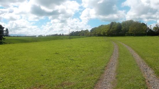 Wheatly Downs Farmstay