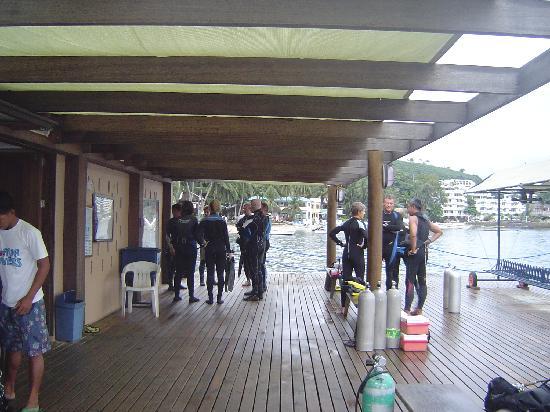 El Galleon Beach Resort & Hotel: Dive area