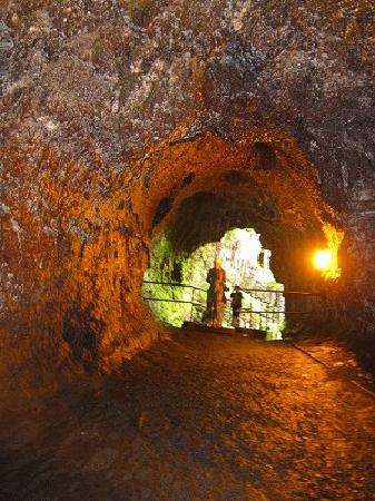 Mt. Kilauea : 溶岩トンネル