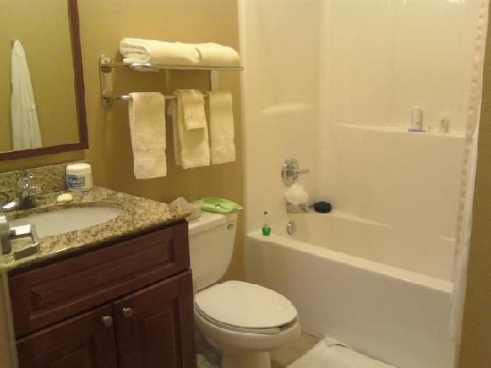 Candlewood Suites Perrysburg: Bathroom curtain smelled like mildew the entire month.