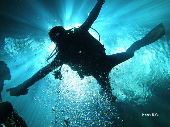 Divetilus Dive Center