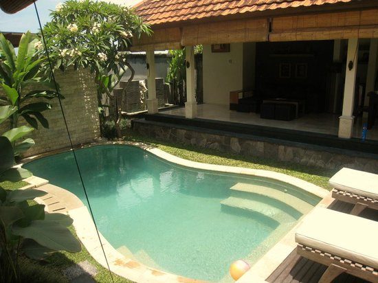 Bali Nyuh Gading Villa: Our private pool