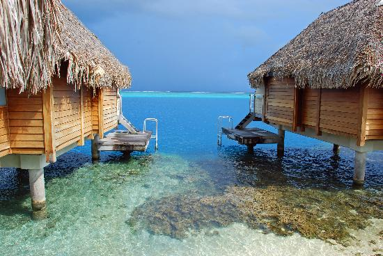 Manava Beach Resort & Spa - Moorea: Bungalows on the Reef - Great Snorkeling Outside your Door!