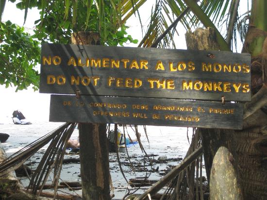 "Playa Manuel Antonio: Sign on the beach:  ""Do Not Feed the Monkeys"""