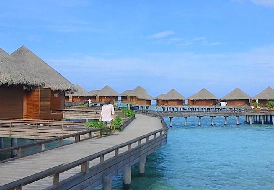 Baros Maldives: 水上ヴィラ