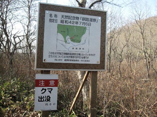 Kushiro Shitsugen FatBike Guide Tour: 熊がでるかな?