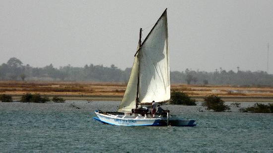 Voile au Senegal: location de voiliers