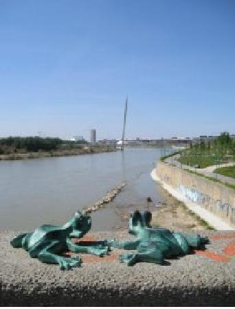 El Ebro: Le ranocchiette