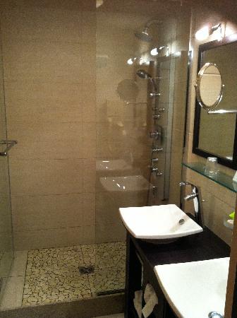 La Bresse, France: salle de bains