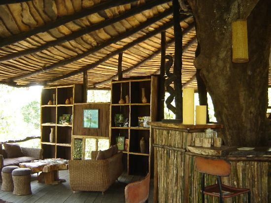 Pugdundee Safaris Tree House Hideaway: The Bar in reception area