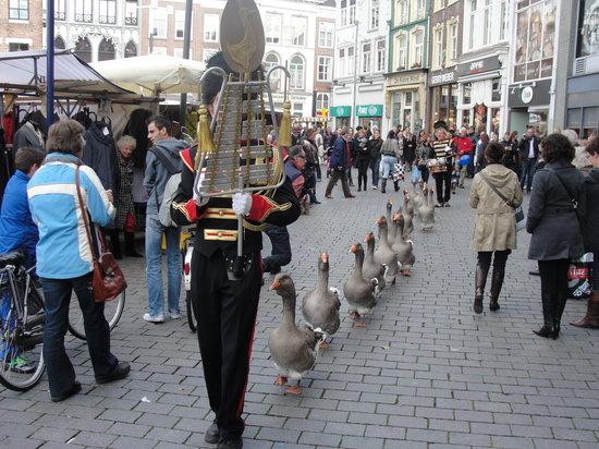 Den Bosch, Belanda: Gänsemarsch am Marktplatz