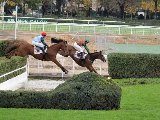 Hippodrome d'Auteuil: Over the water jump at Auteuil