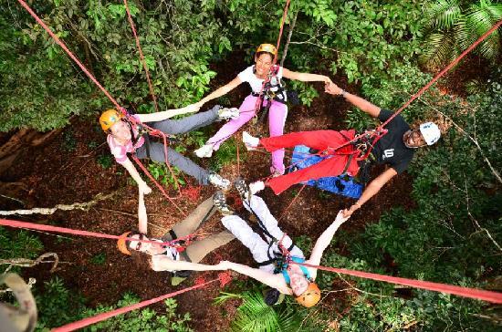 Amazon Tree Climbing: having fun