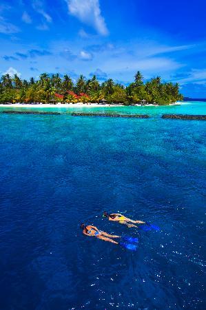 Kurumba Maldives: Snorkeling on the house reef
