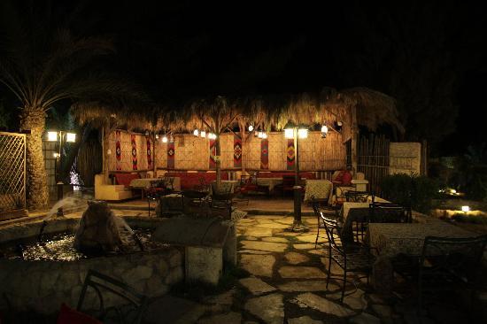 Zenobia Cham Palace Hotel : Dove ammirare le rovine