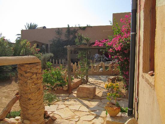 Dar Souleiman : aperçu du jardin