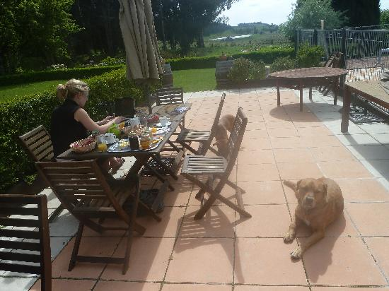 Ugbrooke Country Estate: Having breakfast outside on a beautiful day
