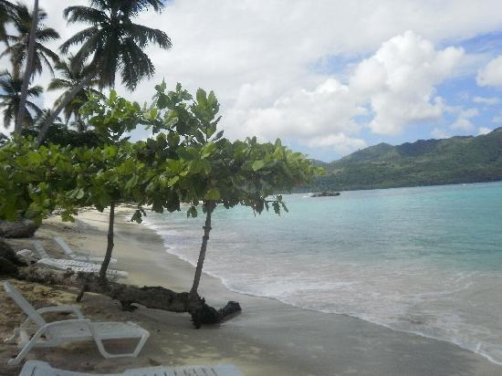 Grand Bahia Principe El Portillo: Playa Rincon